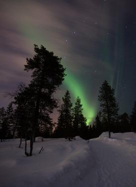 Northern Lights in Finnish Lapland (Copyright: Christopher D. Allsop)