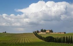 Tuscany (Copyright: Christopher D. Allsop)
