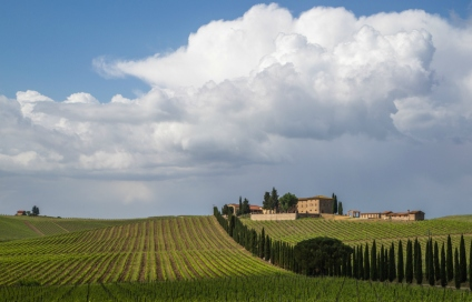 Tuscany (Copyright: Christopher D. Allsop)